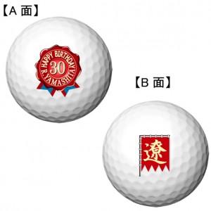 select_emblem2_shinsen